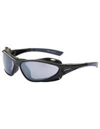 Goggle Pae T560 Solbriller